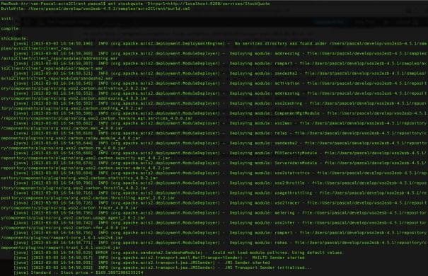 Resultado de imagem para Apache Synapse running