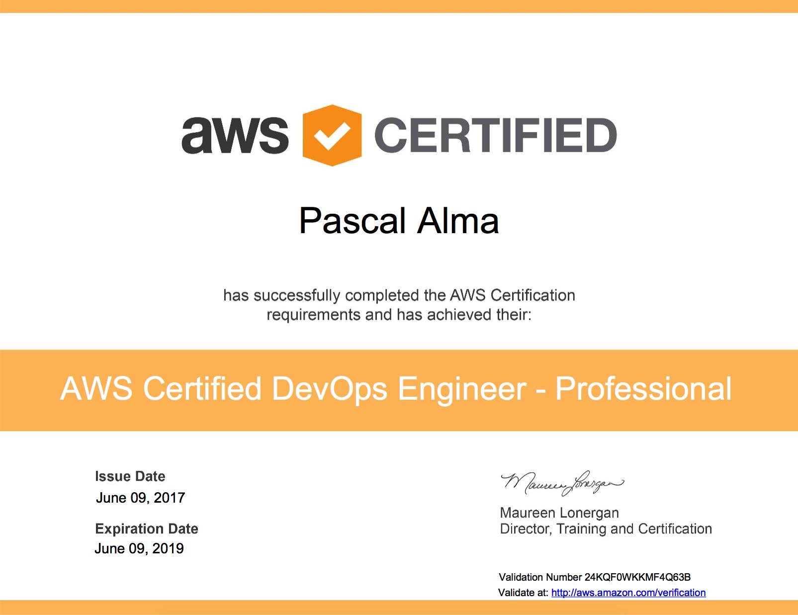 Aws Devops Engineer Professional Got It The Pragmatic Integrator